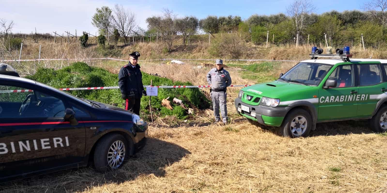 carabinieri-verona-sequestro-discarica-2