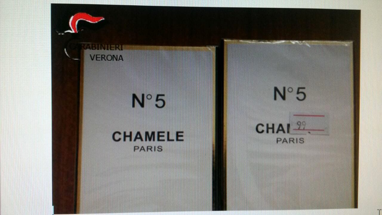 Chamele n.5-2