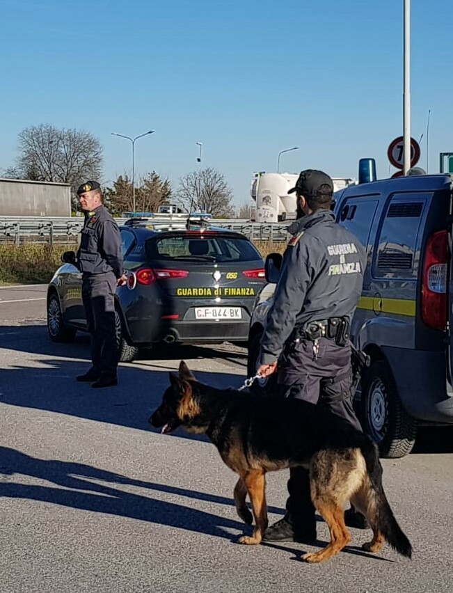 cane anti droga guardia di finanza