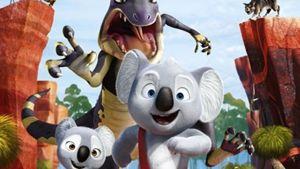 billy-il-koala-gvub-2