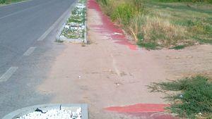 mazzantica-villafontana una pista ciclabile nella foresta amazzonica. grazie sindaco montagnoli e assessore giaretta ( mazzantichese doc)-3