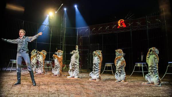 """A San Giovanni Lupatoto l'American Circus con il nuovo show """"The Dreamer"""""""
