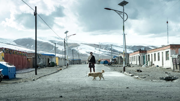 A Bosco Chiesanuova il Film Festival della Lessinia: lo sguardo del cinema sulla Terra