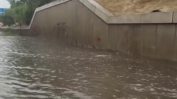 Rapido temporale a Verona: strade come fiumi, rami ed alberi caduti