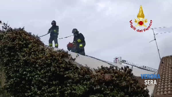 Va a fuoco il tetto di una carrozzeria e i vigili del fuoco salvano l'attività