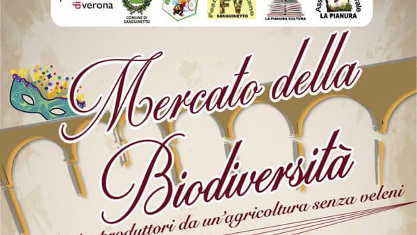 A Sanguinetto domenica 11 febbraio il Mercato della Biodiversità
