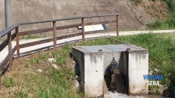 consorzio di bonifica: molti i lavori in corso sul territorio, tra roverchiara e valeggio sul mincio. massima attenzione alla sicurezza idraulica-4