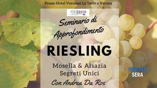 Seminario di approfondimento: riesling - Mosella & Alsazia