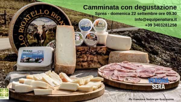 Camminata in Lessinia con degustazione e preparazione del formaggio