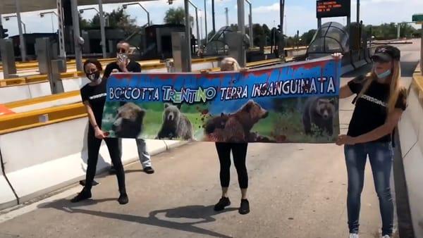 Animalisti contro il Trentino bloccano corsia del casello di Verona Nord