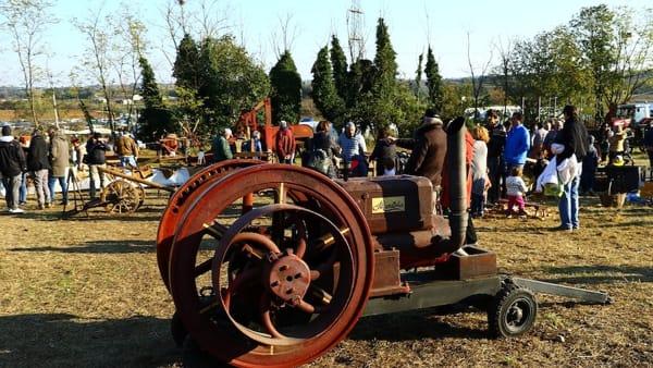 Tradizione agricola e folklore:a Castelnuovo del Garda l'antica Fiera di Cavalcaselle