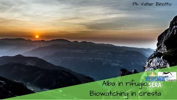 """""""Alba in rifugio"""": biowatching sulla cresta del monte Baldo"""