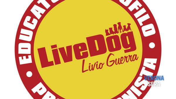 Educatore Cinofilo LiveDog: il corso completo a Verona dal 24 ottobre
