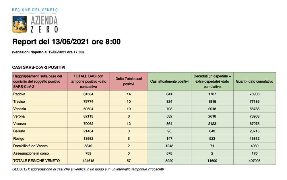 Report Regione Veneto 13 giugno 2021 ore 8
